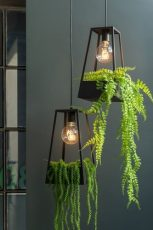 suspension support plante noir ref 3508-34€